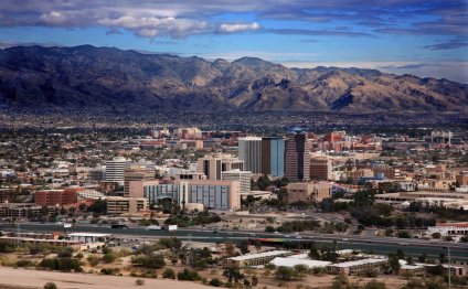 Arizona Real Estate Trends